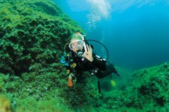 Great Barrier Reef Turu